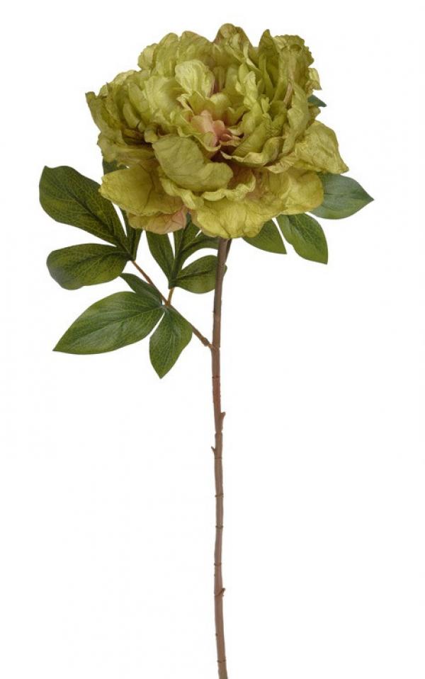 Umelý kvet pivónie zelený 71cm