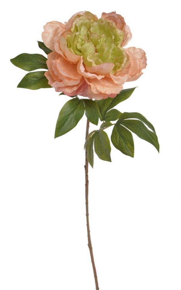 Umelý kvet pivónie ružovo-zelená 71cm